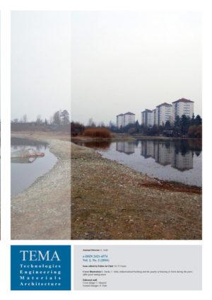 copertina TEMA vol 2 n 2